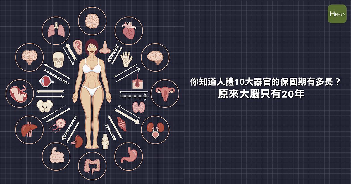 你知道人體10大器官的保固期有多長?原來大腦只有20年