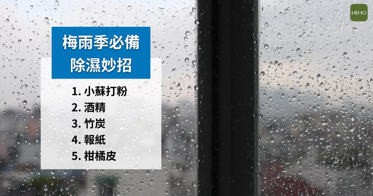 一到雨天家裡就明顯變濕? 5種「天然除濕機」便宜又好用