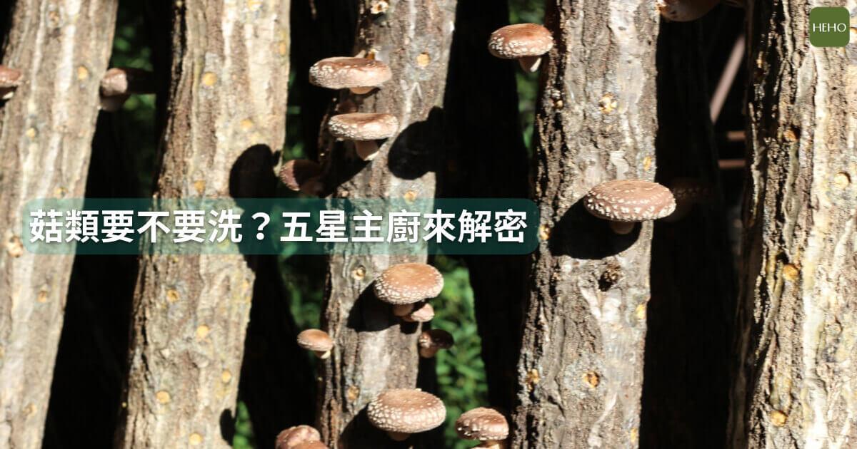菇類不用洗就可以吃?五星級飯店主廚這樣說