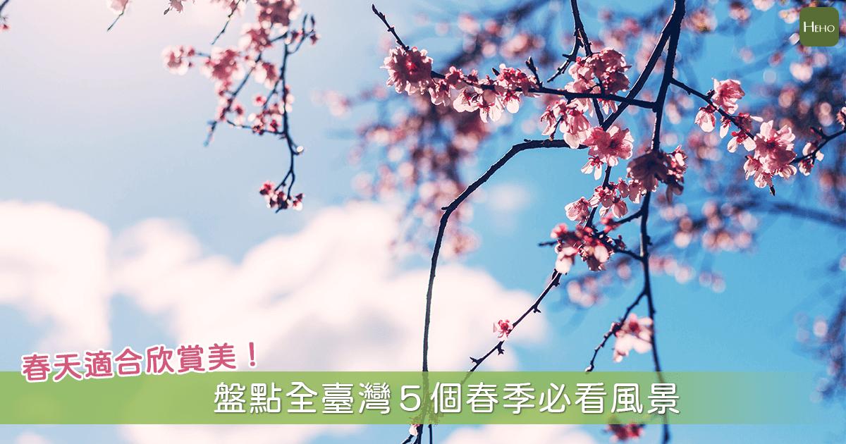 春天是最適合旅行的季節!盤點全台5大人氣春季必看風景
