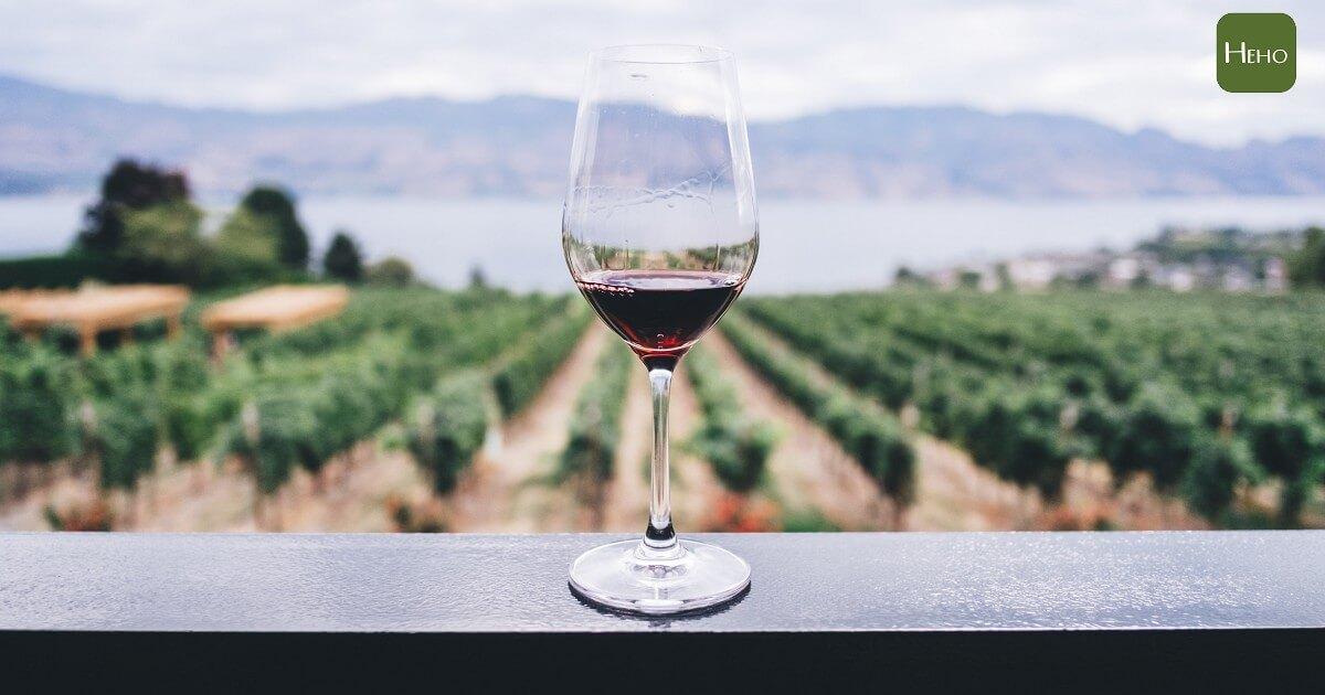 哈佛醫師:每週飲用 2 杯有機葡萄酒是最好的抗老化方法
