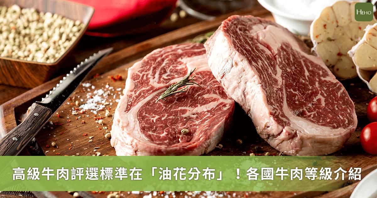 牛肉美味的關鍵取決「油花」分布?一文看懂各國牛肉等級